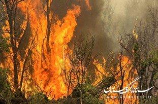 حضور نیروهای یگان حفاظت منابعطبیعی در منطقه آتشسوزی جنگلی کلاله/ پرواز پهباد برای شناسایی حجم و نقطه دقیق آتشسوزی