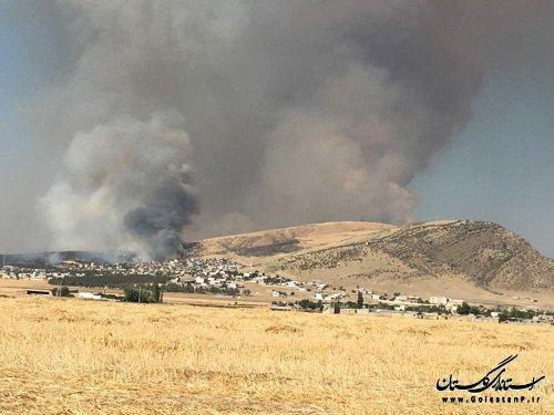 مهار آتشسوزی جنگلهای سوزنی برگ کلاله