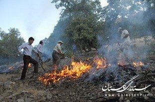 اطفا آتشسوزی عصر چهارشنبه کلاله/ آتش زدن کاه و کلش علت آغاز حریق در جنگل