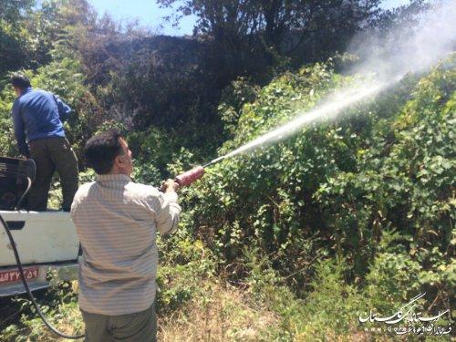 آتشسوزی منطقه جنگلی «حسینا» شهرستان مینودشت مهار شد